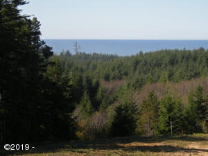 482 SE 130th Dr, South Beach, OR 97366 - Ocean View