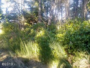TL4800 Wyoming St, Yachats, OR 97498 - Lot side view
