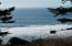 TL102 Horizon View, Neskowin, OR 97149 - DSCN6439 (2)