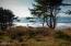 TL102 Horizon View, Neskowin, OR 97149 - DSCN6441 (2)