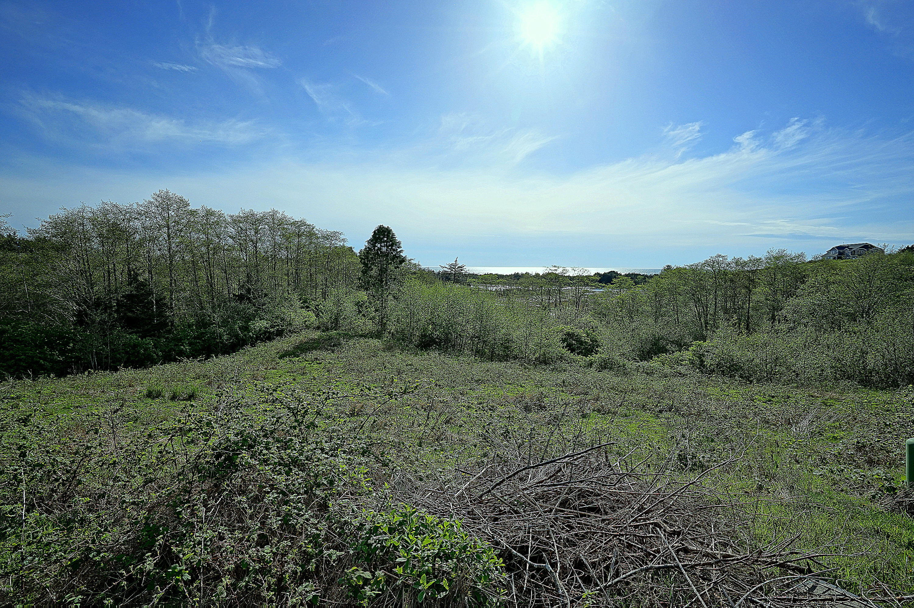 LOT 52 Pelican Point Dr, Neskowin, OR 97149 - DSC02101