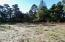 TL 3800 NW Sunahama Pl, Seal Rock, OR 97376 - Looking South on lot