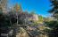5275 Yaquina Bay Rd, Newport, OR 97365 - Organic Fruit & Garden
