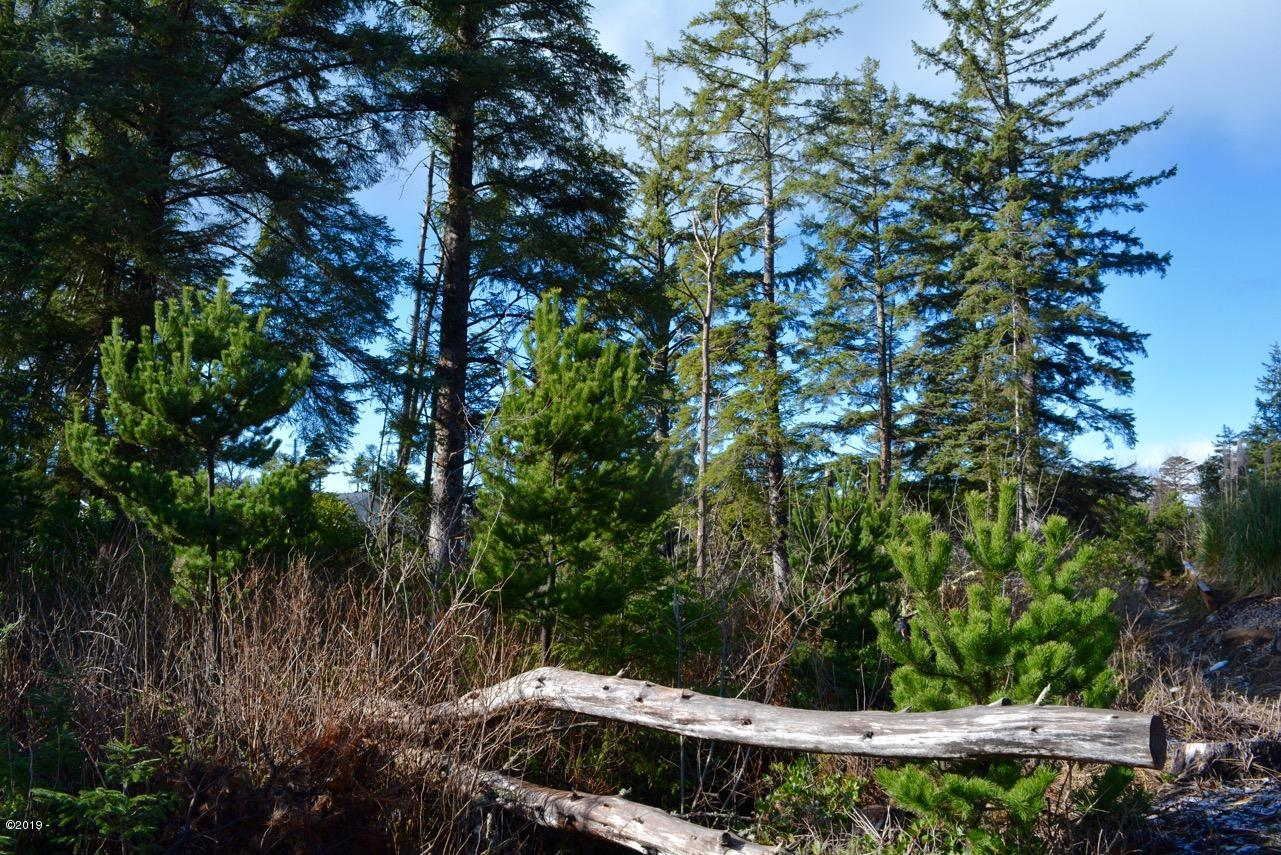 LOT 4-15BL NW Riggen St., Seal Rock, OR 97376 - Lot 2019