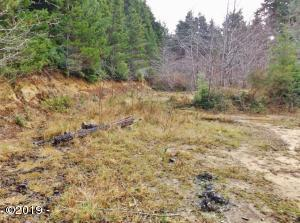 LOT  #11 Newton Dr, Waldport, OR 97394 - Newton Dr Lot 004
