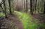 5275 Yaquina Bay Rd, Newport, OR 97365 - Nature Trail