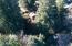 373 N Deerlane Dr, Otis, OR 97368 - Cabin Aerial View