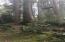 TL 600 NE Oregon St., Yachats, OR 97498 - Pic 5