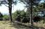 TL 5000 NW Raspberry Ln, Seal Rock, OR 97376 - View From Street DSC01008