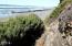 TL 5000 NW Raspberry Ln, Seal Rock, OR 97376 - Path DSC01025