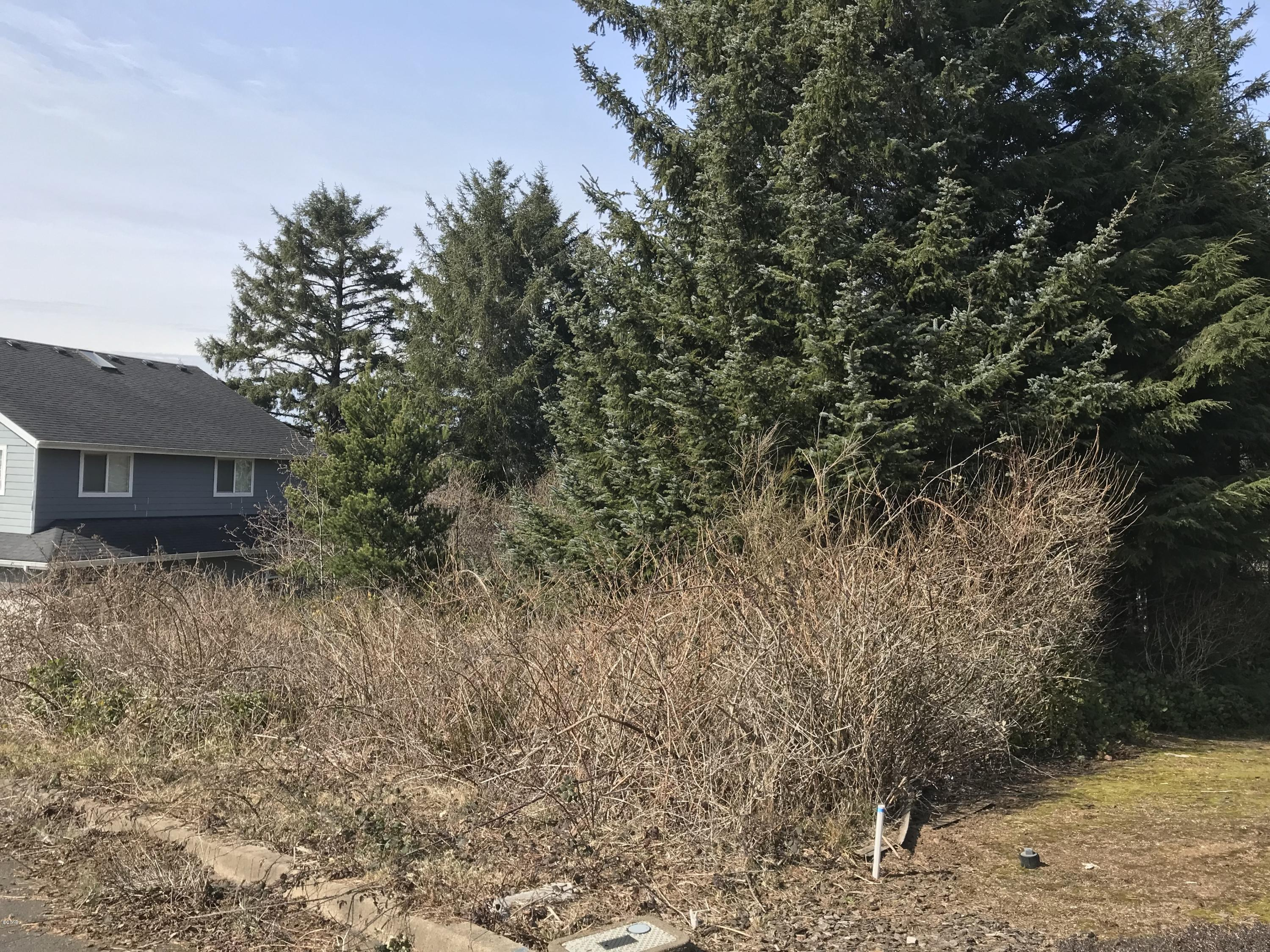 LOT 22 NE 71st Place, Newport, OR 97365 - Street View
