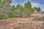 1909 NW Hilton Dr, Waldport, OR 97394 - Adjoining Lot