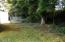 1525 SE Rio Vista Dr, Waldport, OR 97394 - Back yard & Trees