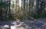 452 4th St, Yachats, OR 97498 - Wooded with small trees