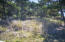 1817 NW Sandpiper Dr, Waldport, OR 97394 - Nice corner lot!
