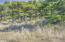 1817 NW Sandpiper Dr, Waldport, OR 97394 - Great LOT!!