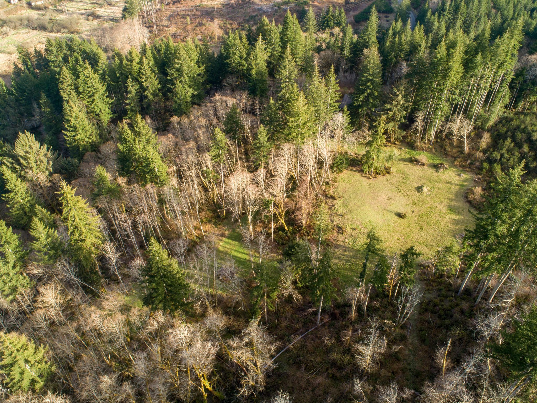 PARCEL 1 Olalla Rd, Toledo, OR 97391