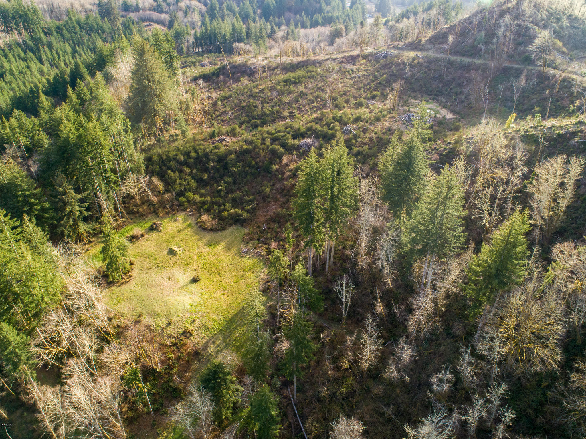 PARCEL 2 Olalla Rd, Toledo, OR 97391