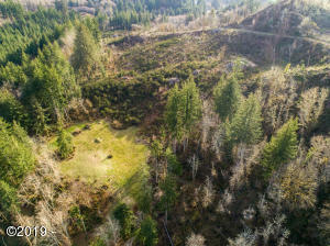 PARCEL 2 Olalla Rd, Toledo, OR 97391 - Aerial Photo