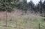 3981 Logsden Rd, Siletz, OR 97380 - small orchard