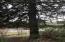 3981 Logsden Rd, Siletz, OR 97380 - IMG_0384