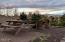 4789 Holly Heights Ave, Netarts, OR 97143 - PicnicArea2