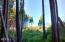 571 Fairway Dr, Gleneden Beach, OR 97388 - hill above woods