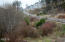 695 SW 26th Ln, Lincoln City, OR 97367 - View of the Nature Park