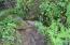 462 Elk City Road, Toledo, OR 97391 - Mini Waterfall