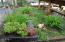 833 SW 13th St, #1, Newport, OR 97365 - Entry landscaping