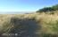 479 Lookout Ct, Gleneden Beach, OR 97388 - Path to beach