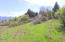 T/L 805 Reddekopp Rd, Pacific City, OR 97135 - Clearing of Lot to the North