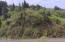 T/L 805 Reddekopp Rd, Pacific City, OR 97135 - Street Level View