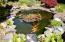 344 NE San-bay-o Circle, Newport, OR 97365 - Fish Pond