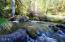 1555 Page Creek Rd, Grants Pass, OR 97523 - Stream