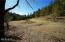 1555 Page Creek Rd, Grants Pass, OR 97523 - Potential Building Site
