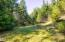 1555 Page Creek Rd, Grants Pass, OR 97523 - Meadow