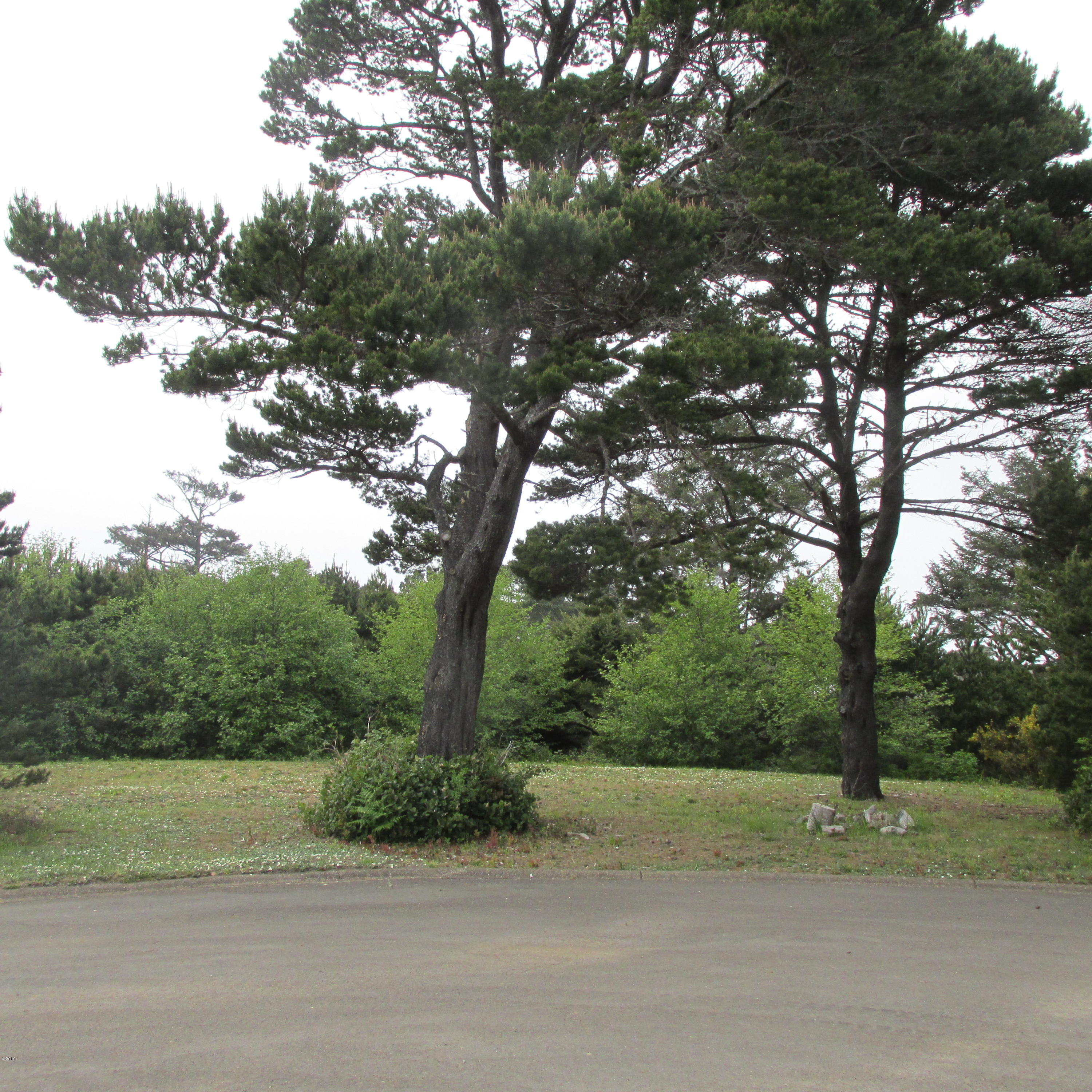TL500 Sailfish Loop, Waldport, OR 97394 - Level lot in 55 and over