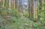 4358 NE East Devils Lake Rd, Otis, OR 97368 - Walking Trail