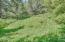 4358 NE East Devils Lake Rd, Otis, OR 97368 - Amphitheater