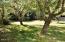 115 NE High St, Waldport, OR 97394 - Fruit Trees & Berries