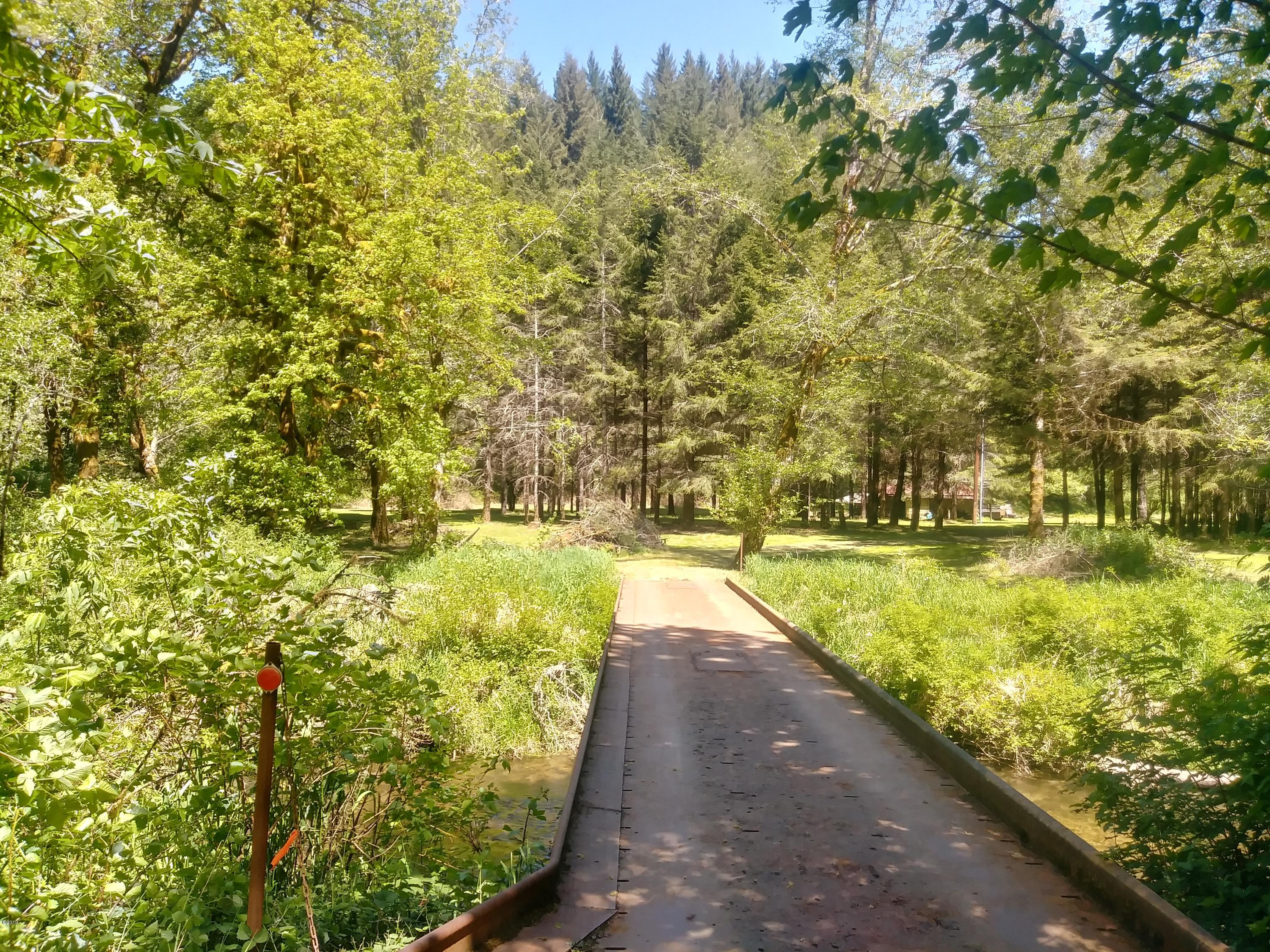 584 E Buck Creek Rd, Tidewater, OR 97390 - Driveway over the Creek