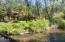 584 E Buck Creek Rd, Tidewater, OR 97390 - River
