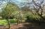 11668 SE Ash St, South Beach, OR 97366 - Orchard