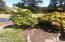 11668 SE Ash St, South Beach, OR 97366 - Garden