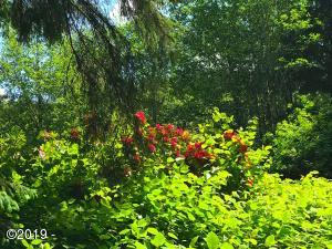 5582 Tenmile Creek Road, Yachats, OR 97498 - rhodiestemile