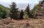 LOT 39 Blackstone Ii, Yachats, OR 97498 - Cayuco Blackstone II Photo 1