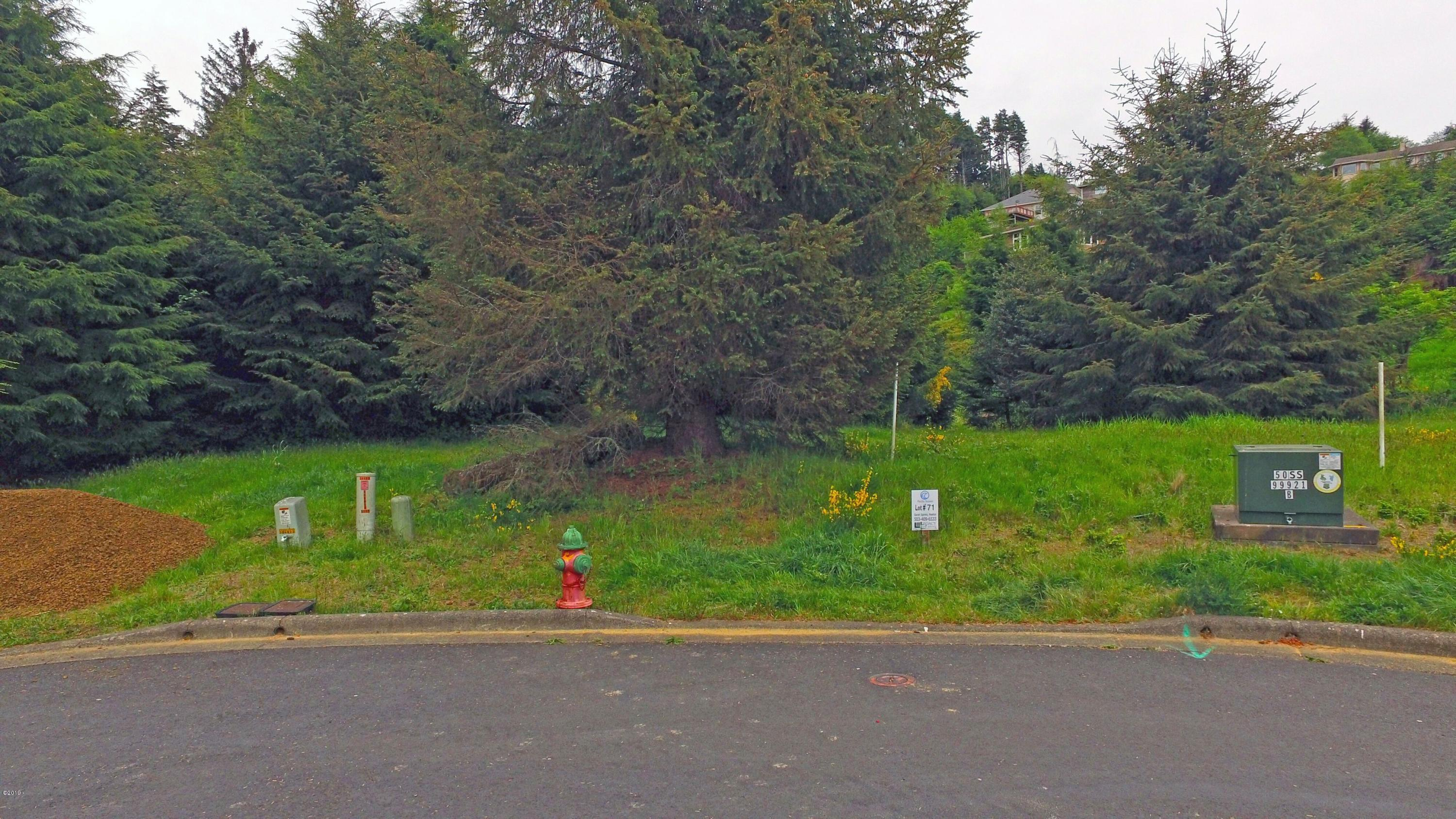 LT71 Kahana, Pacific City, OR 97135 - Lot 71