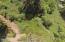 TL #1708 Twana Trace, Neahkahnie, OR 97130 - DJI_0755
