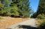 T/L 808 First Creek Rd, Lebanon, OR 97355 - 20180919_104048